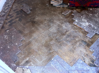 Columbian Pine Parquet Flooring Repaired